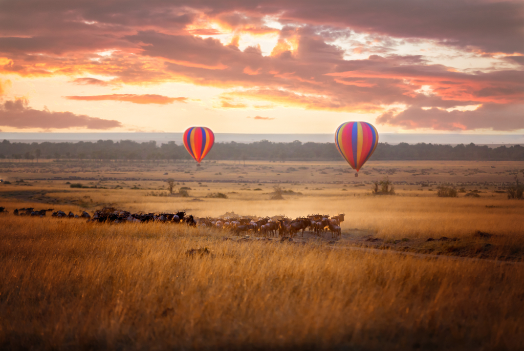 Kenya Tourism Sector Performance in 2019